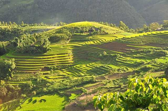 Top 10 tourist attractions in vietnam for Terraced landscape definition