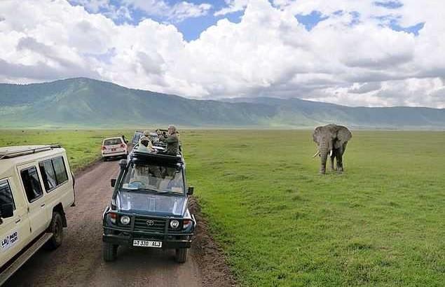 Kenya, ecotourism parks