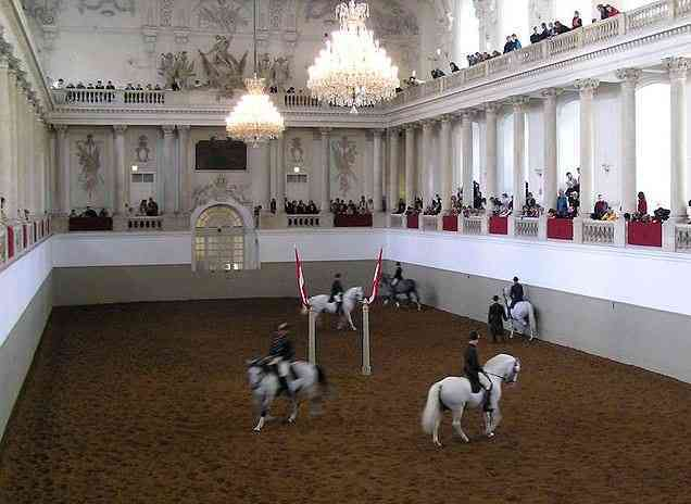 Spanish Riding School, tourist attractions in Vienna