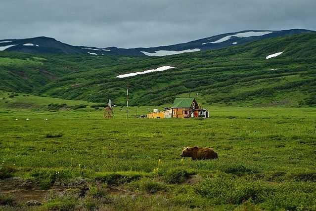 Top 10 Best Destinations for a Bear Safari, Kronotsky Nature Reserve