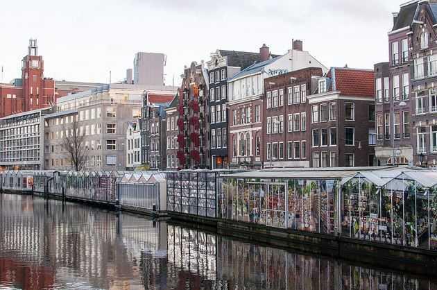 Top 10 Best Things to do in Amsterdam, Bloemenmarkt